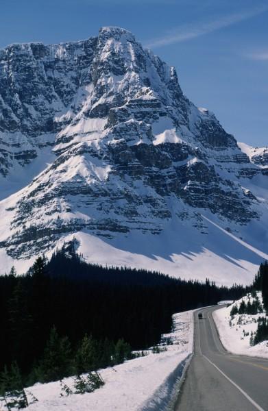 Icefields Pkwy